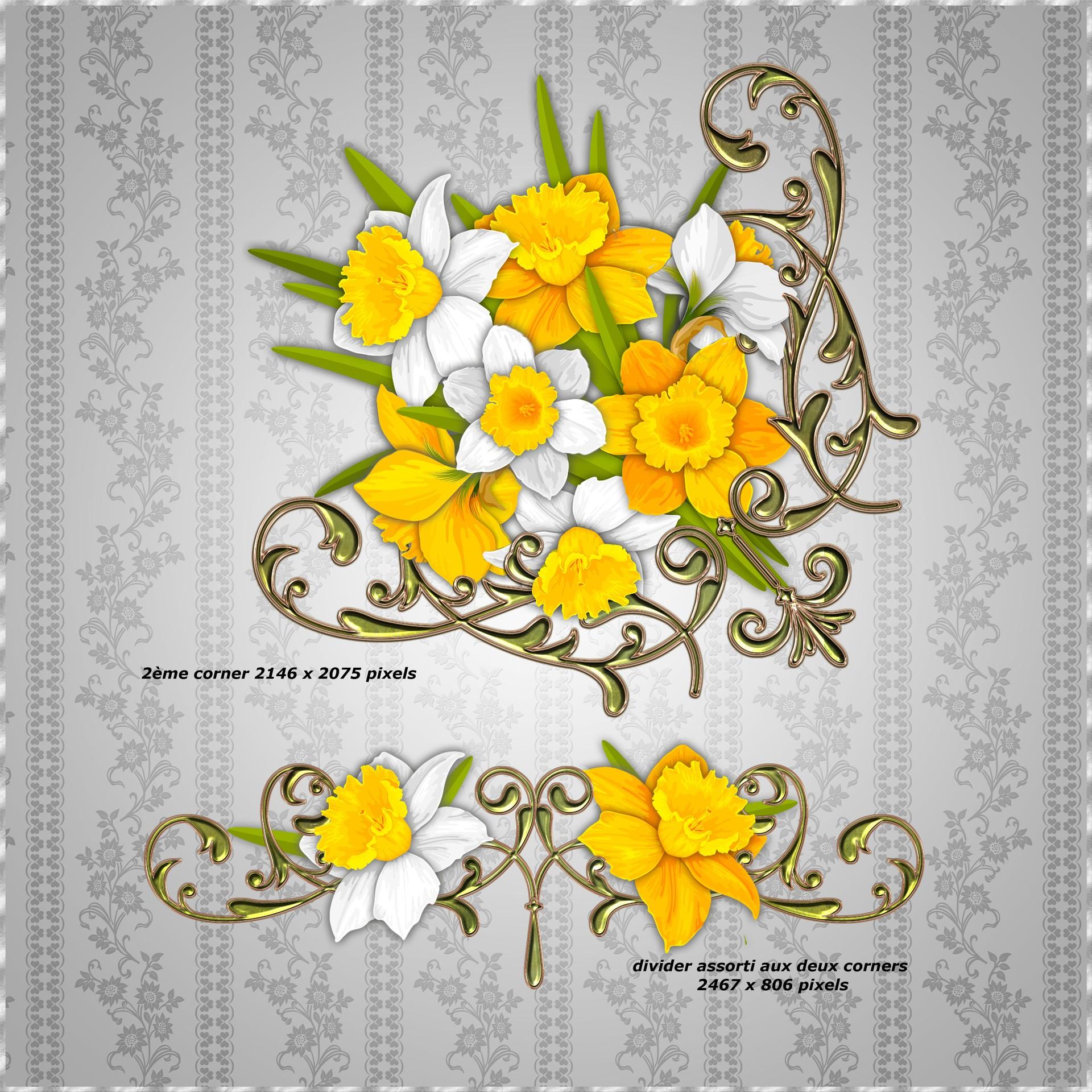 Bibliothèque décorations Jonquilles...et fleurs de printemps - Enluminures de F1ADC