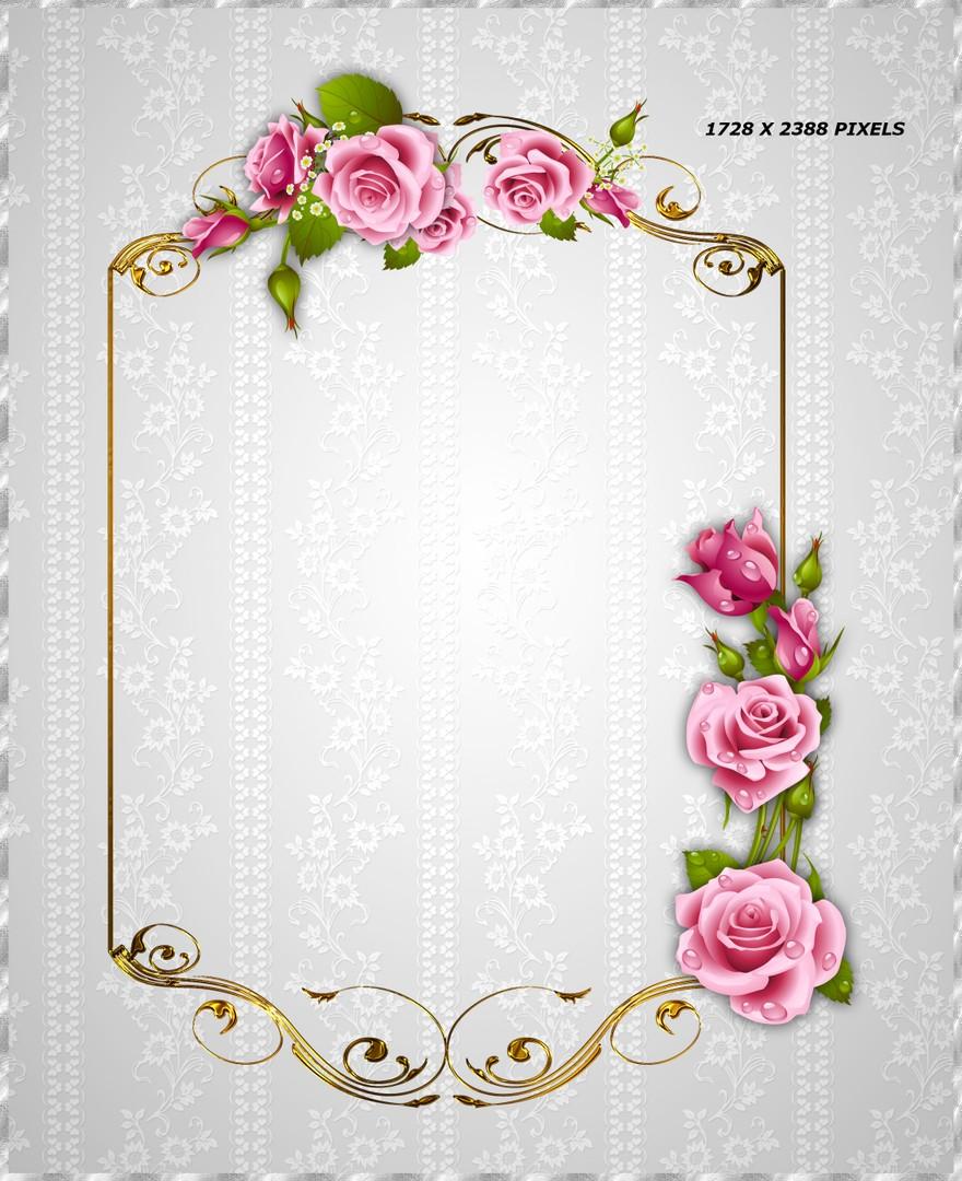 Biblioth que d corations cadres et roses roses for Cadre pour objet decoratif